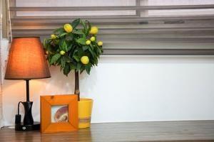 Jak uzyskać dobre warunki mieszkaniowe?